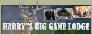 harrys_big_game_logo.jpg